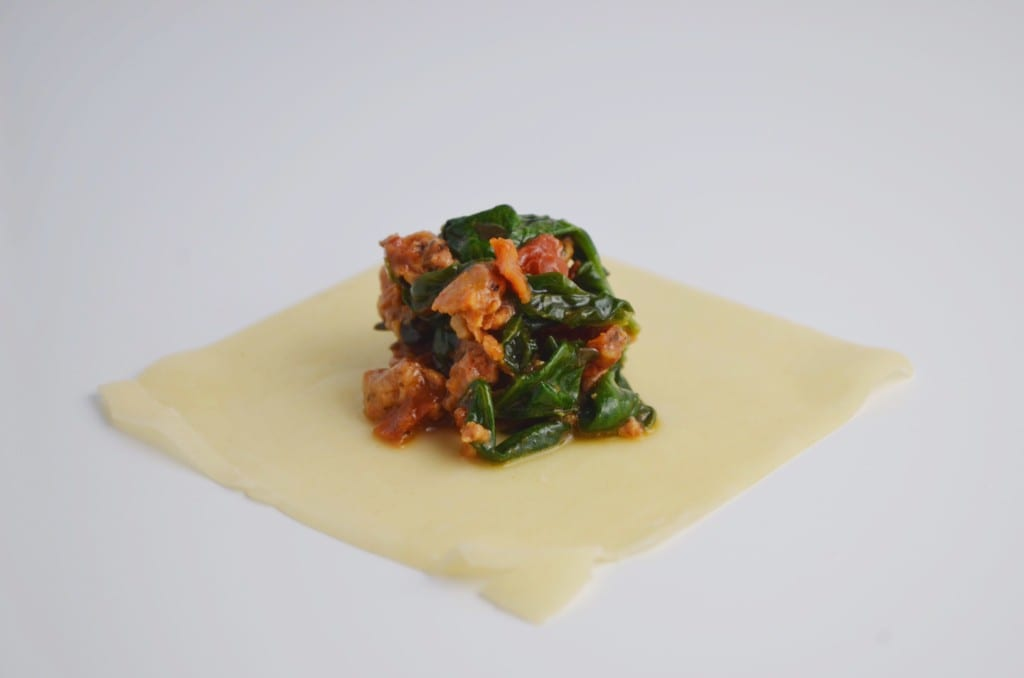 Easy Italian Potstickers