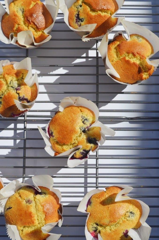 Super Moist Gluten Free Blueberry Muffins
