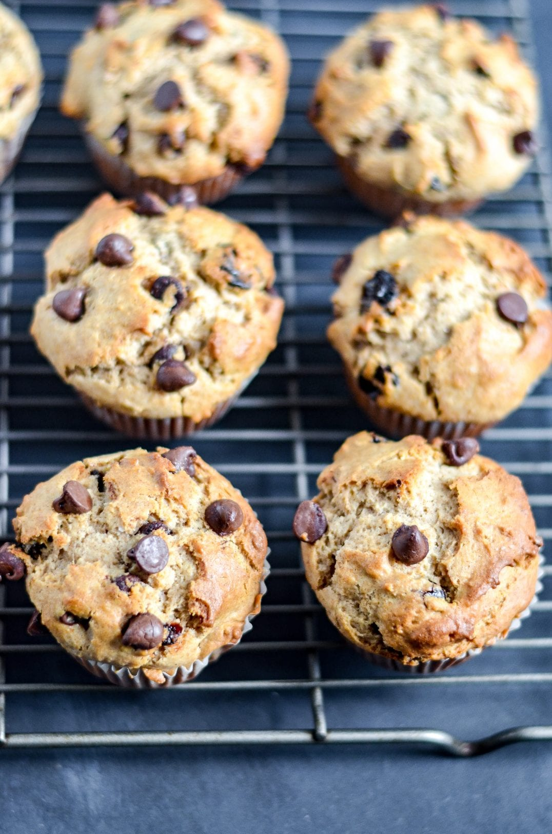 baked muffins with chocolate chips on top sitting on a baking dish