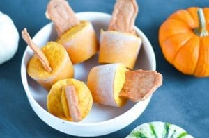 Pumpkin Chicken Jerky Pupsicles