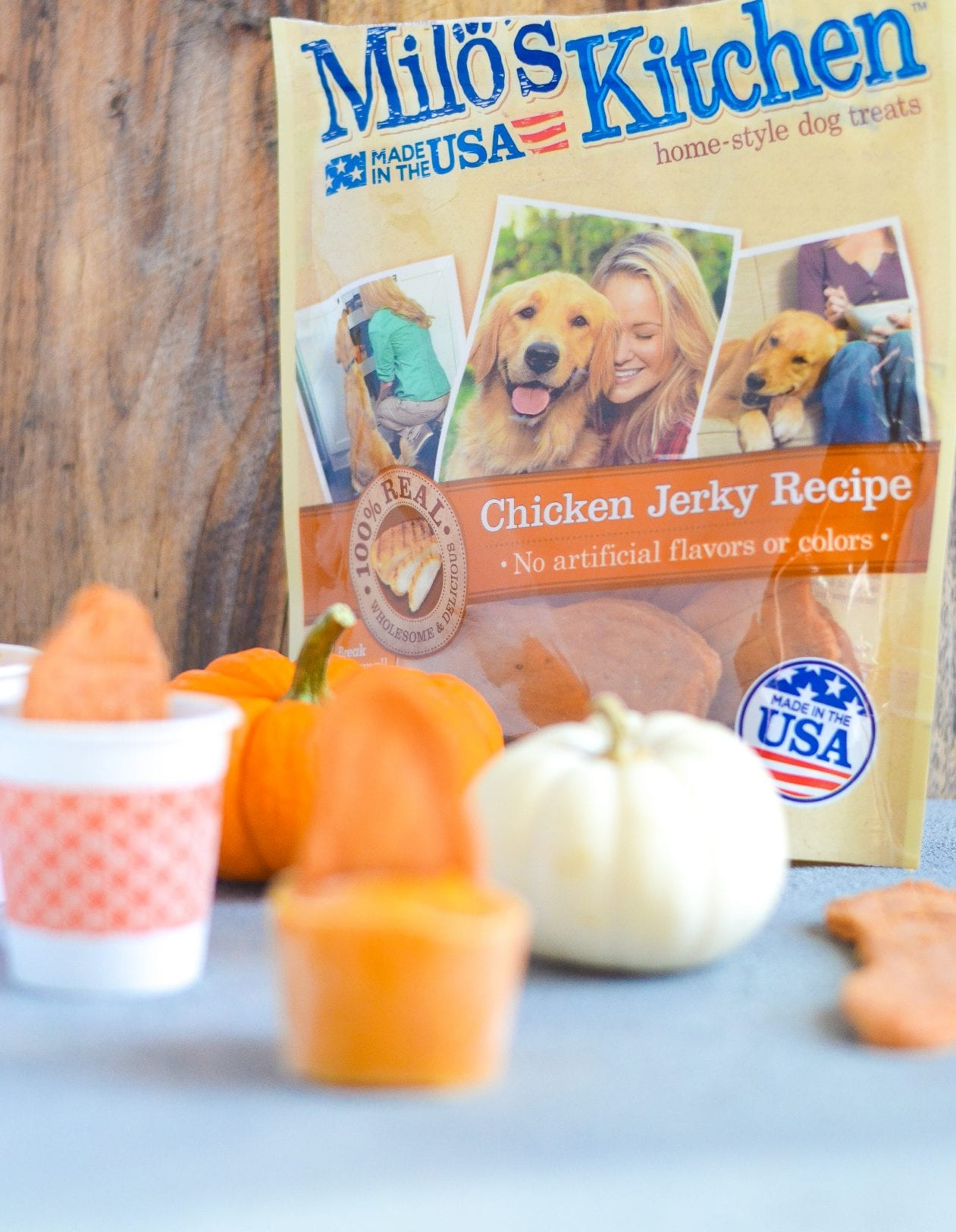 Pumpkin Chicken Jerky Pupsicles -